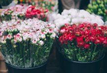 Monceau Fleurs est parvenu à passer de franchise à groupe international